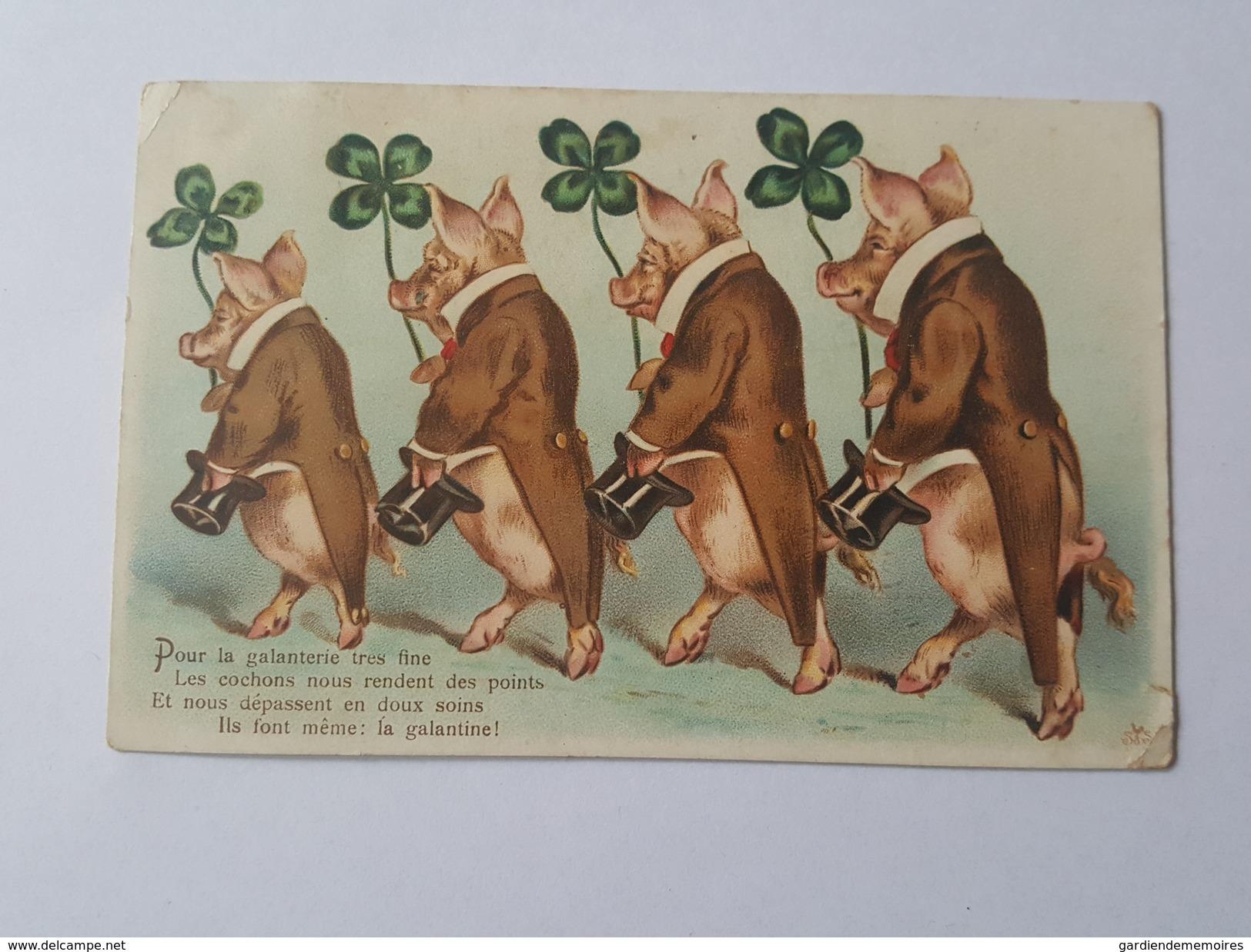 Cochons Humanisés - Veste à Queue De Pie - Chapeau Haut De Forme - Trèfle à 4 Feuilles - La Galanterie - La Galantine - Cochons