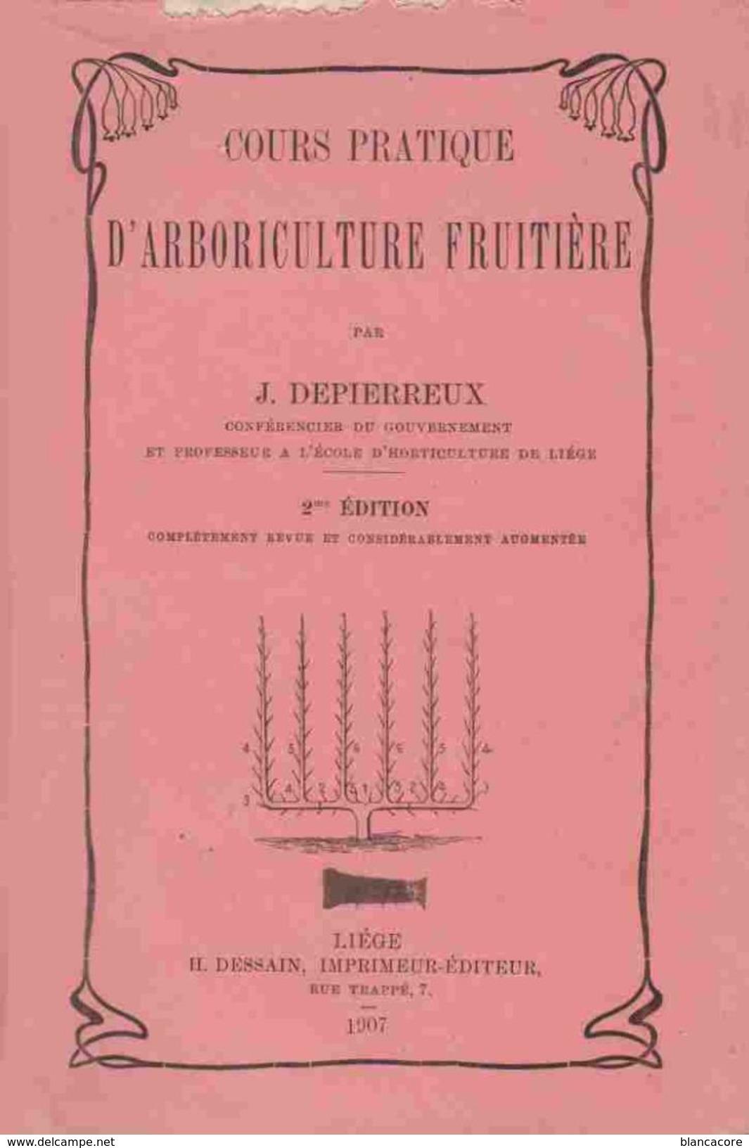 ARBORICULTURE FRUITIERE 1907 Pommier Poirier Prunier Cerisier Greffage Taille Récolte - Garden