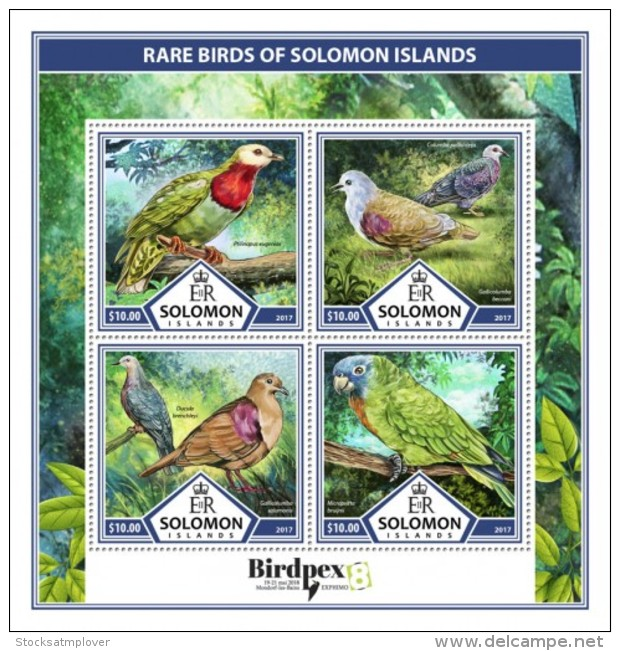 SOLOMON ISLANDS 2017 Rare Birds - Solomon Islands (1978-...)