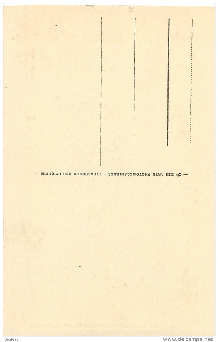 SINGE    GORGES DE CHIFFA    BLIDA - Apen