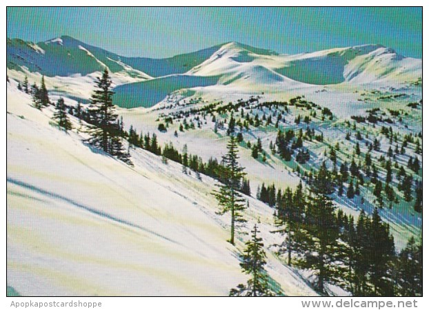 Canada Jasper Marmot Basin Ski Ressort Winter Scene