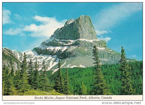 Canada Roche Miette Jasper National Park
