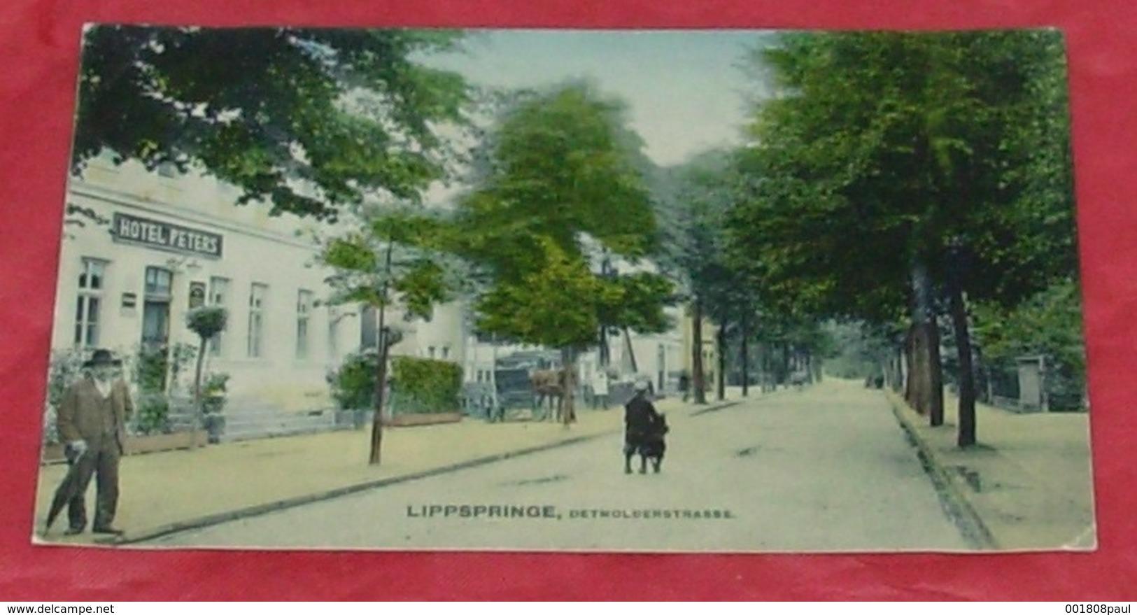 Lippspringe , Detmolderstrasse :::: Hotel Peters - Animation - Attelage ----------- 440 - Bad Lippspringe