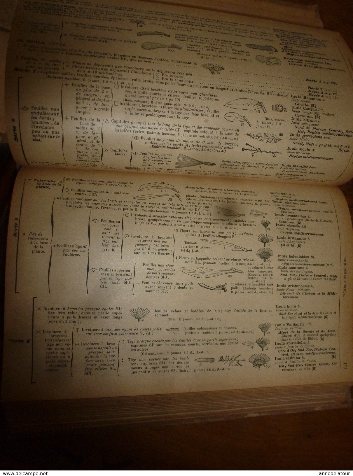1944 FLORE Complète De La France Et De La Suisse Par G. Bonnier Et G. De Layens , Comprenant 5.338 Figures;etc - B. Flower Plants & Flowers