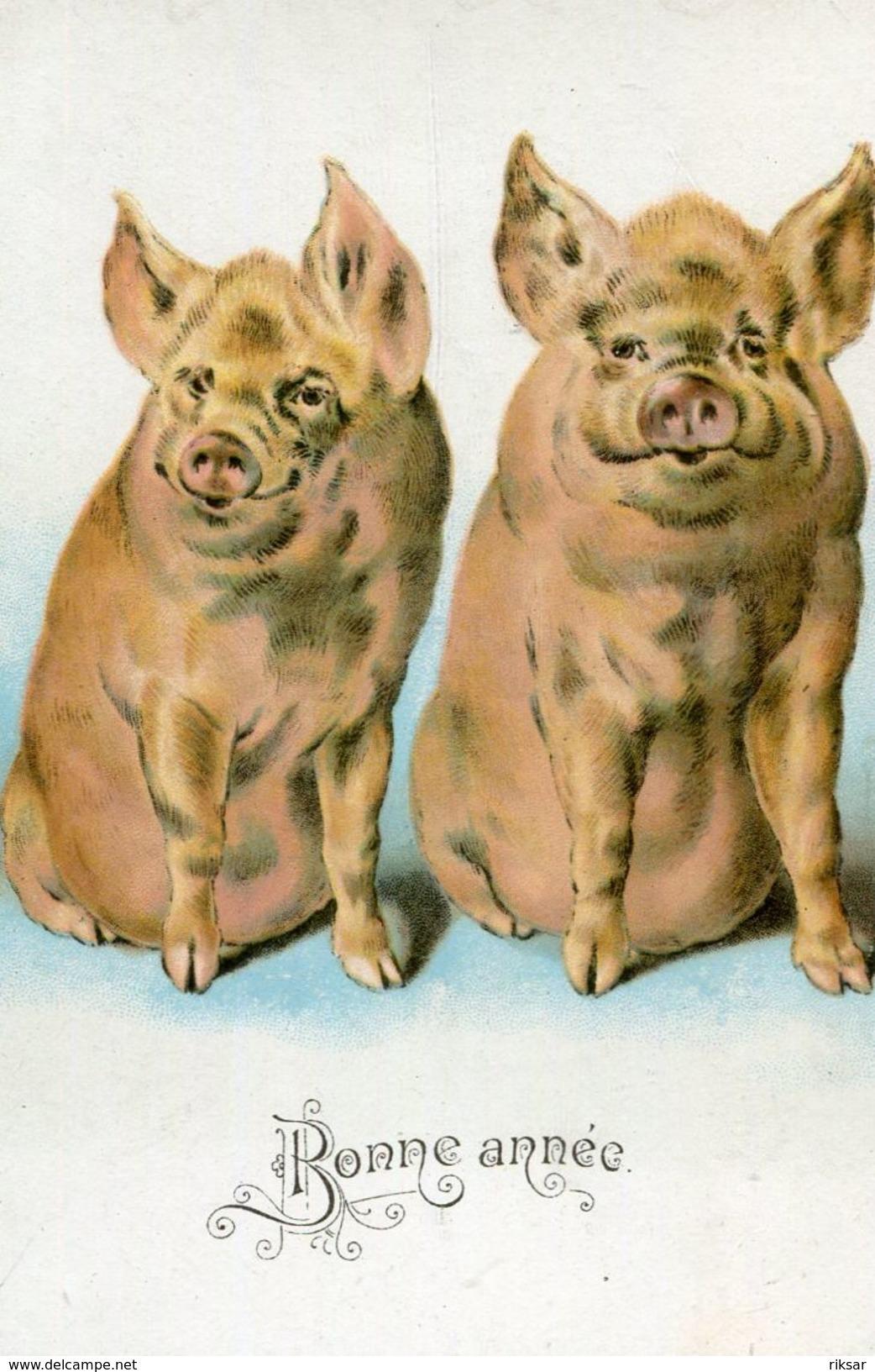 COCHON - Cochons