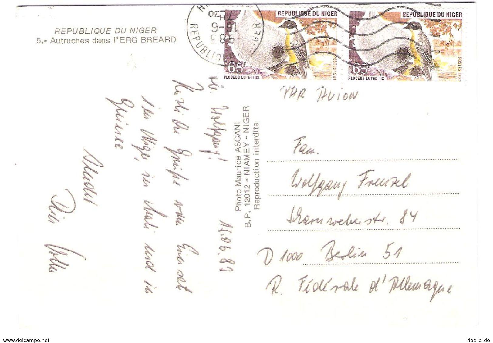 Niger - Autruches Dans L`erg Breard - Strauss - Bird - Vogel - Nice Stamps - Niger