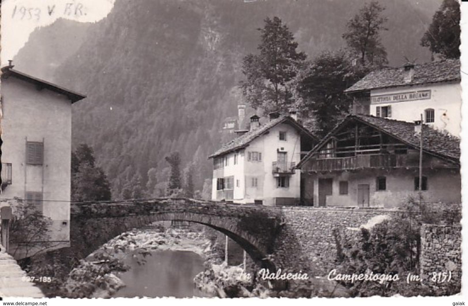 R206 VALSESIA -  CAMPERTOGNO - PARTICOLARE - Vercelli