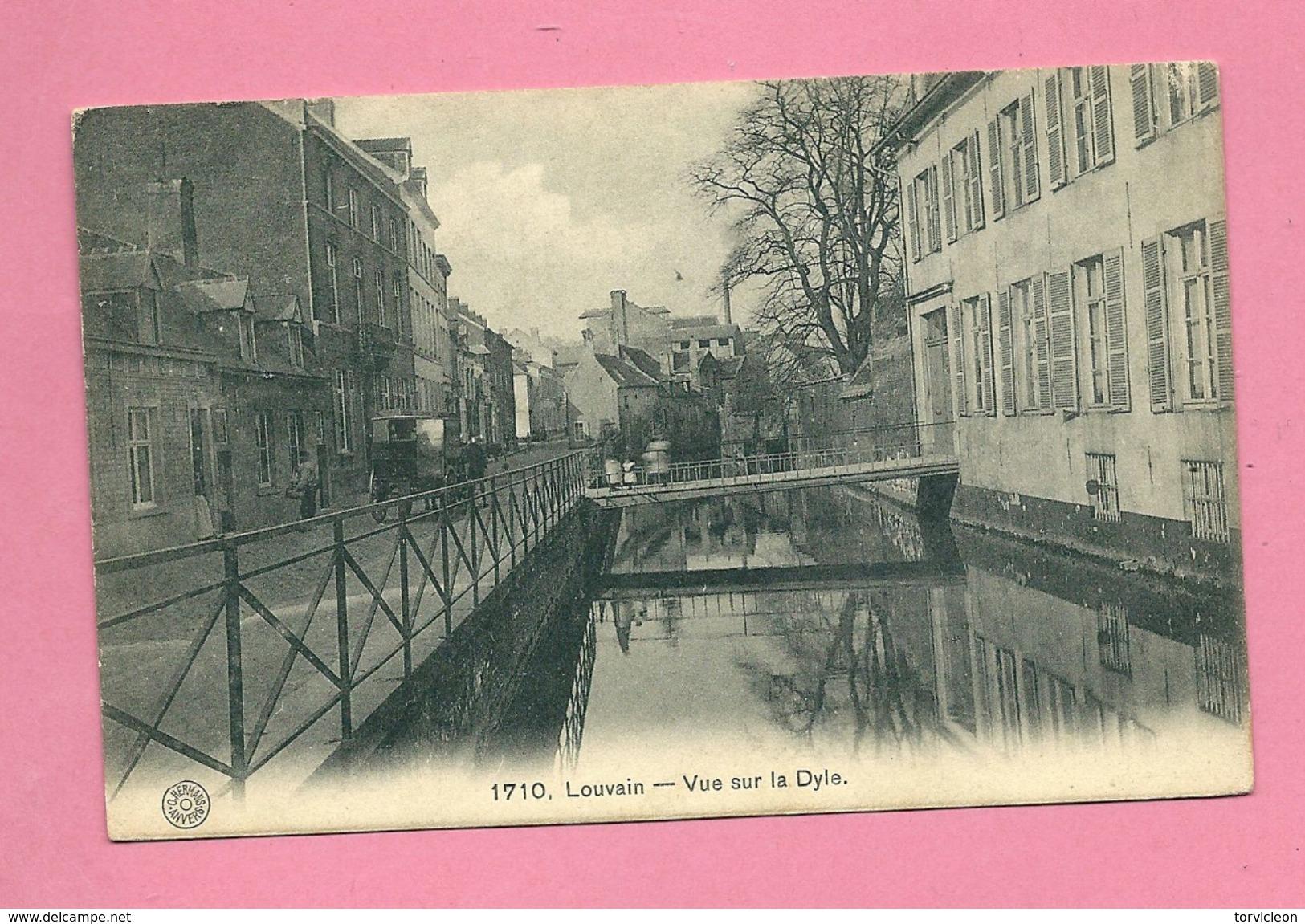 C.P. Leuven =  Vue  Sur La Dyle - Leuven