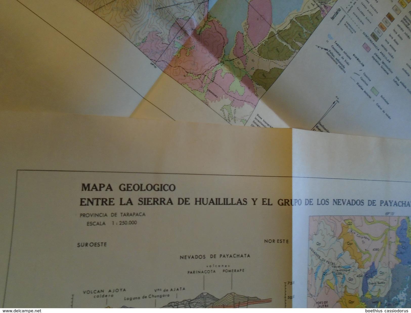 ANDES : GEOLOGIA AREA DE LOS NEVADOS DE PAYACHATA Tarapaca Arica VOLCANISMO CENOZOICO Chile Chili - Culture