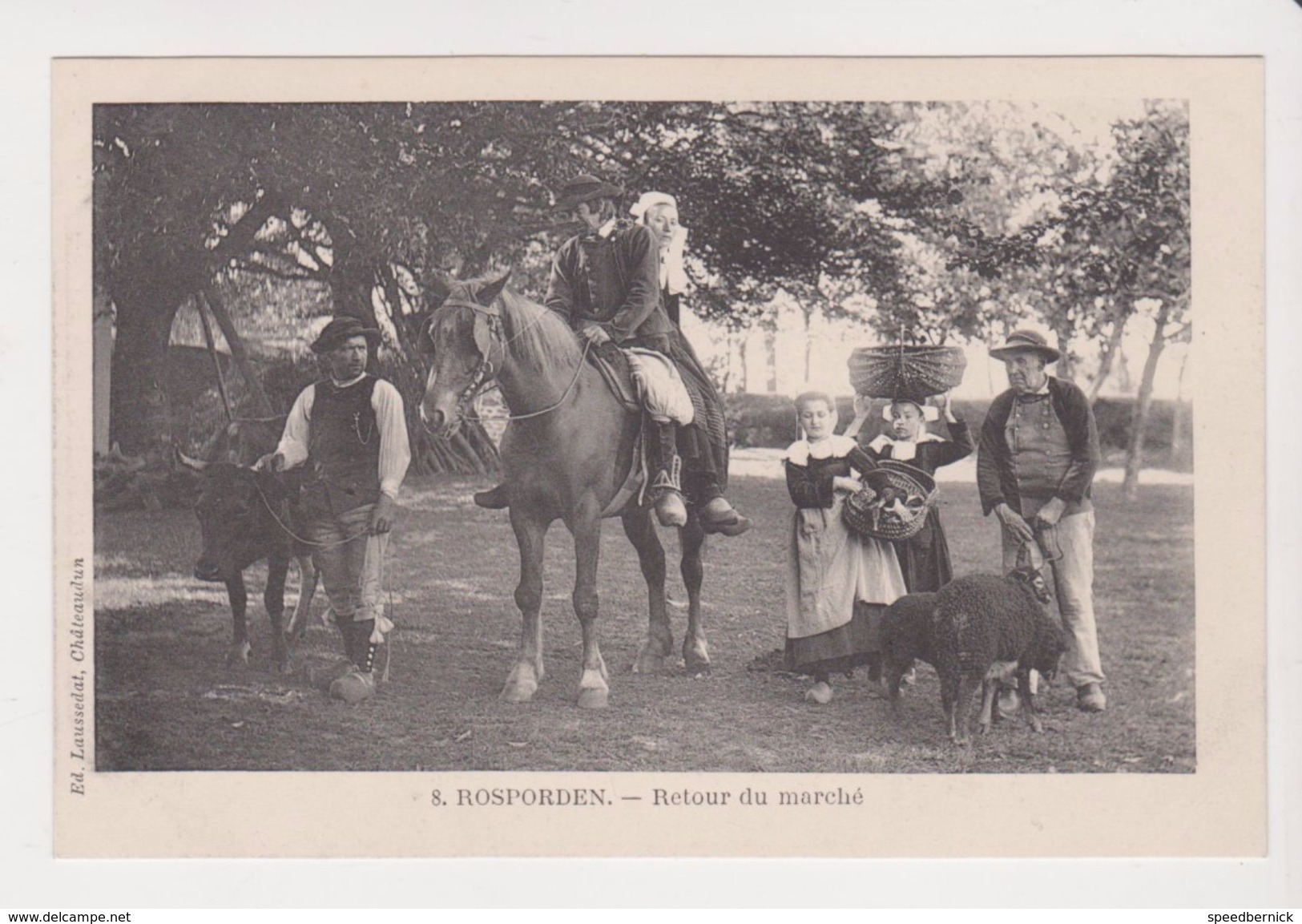 26303 -Rosporden -retour Du Marché -Ed : 8 Laussedat -costume Breton Cheval Mouton Noir Bretagne - Autres Communes