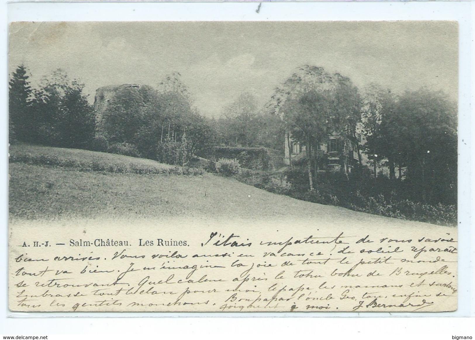 Salm Château Les Ruines - Vielsalm