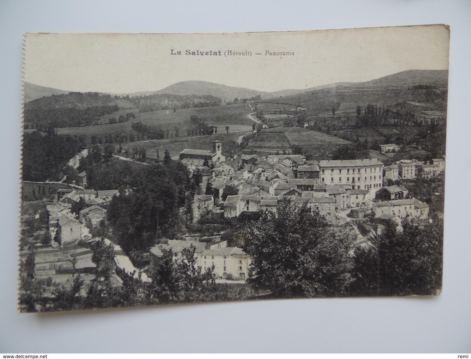 34 LA SALVETAT Lot De 2 Cartes Promenades Des Marronniers Animée & Panorama - La Salvetat
