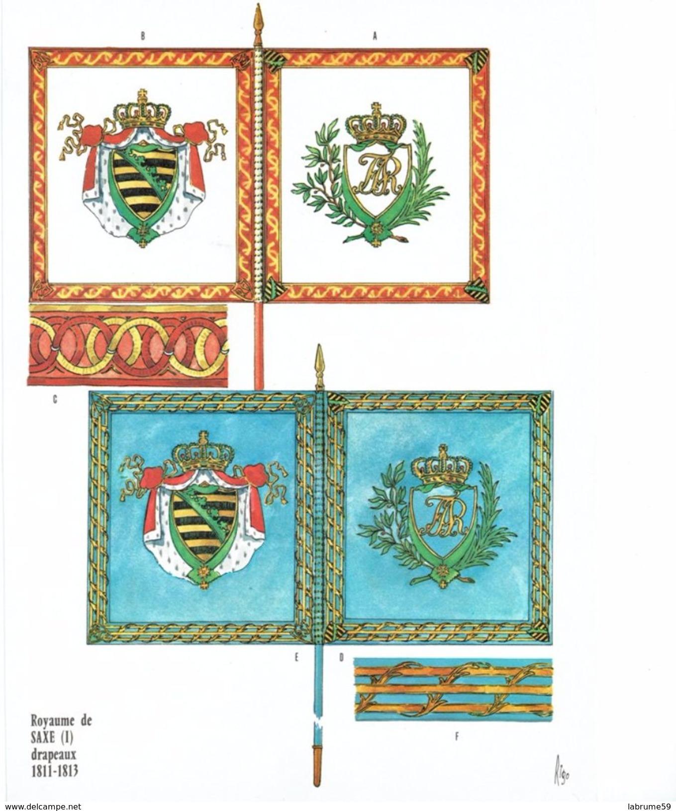 Planche Rigo - Le Plumet D2 Drapeaux - Royaume De Saxe (1) 1811-1813 - Histoire