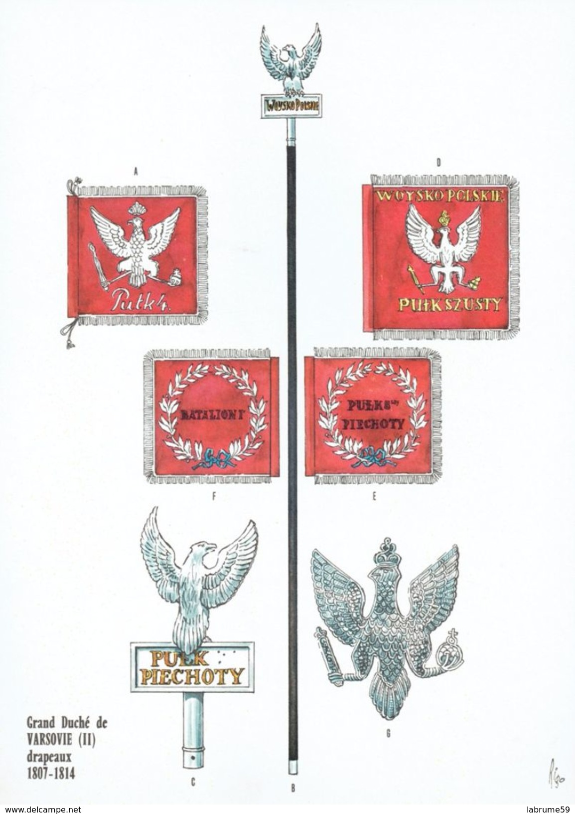 Planche Rigo - Le Plumet D5 Drapeaux - Grand Duché De Varsovie (2) 1807-1814 - Histoire