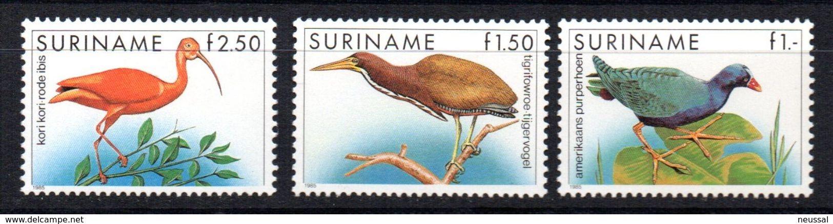 Serie Nº 1014/6 Suriname - Birds