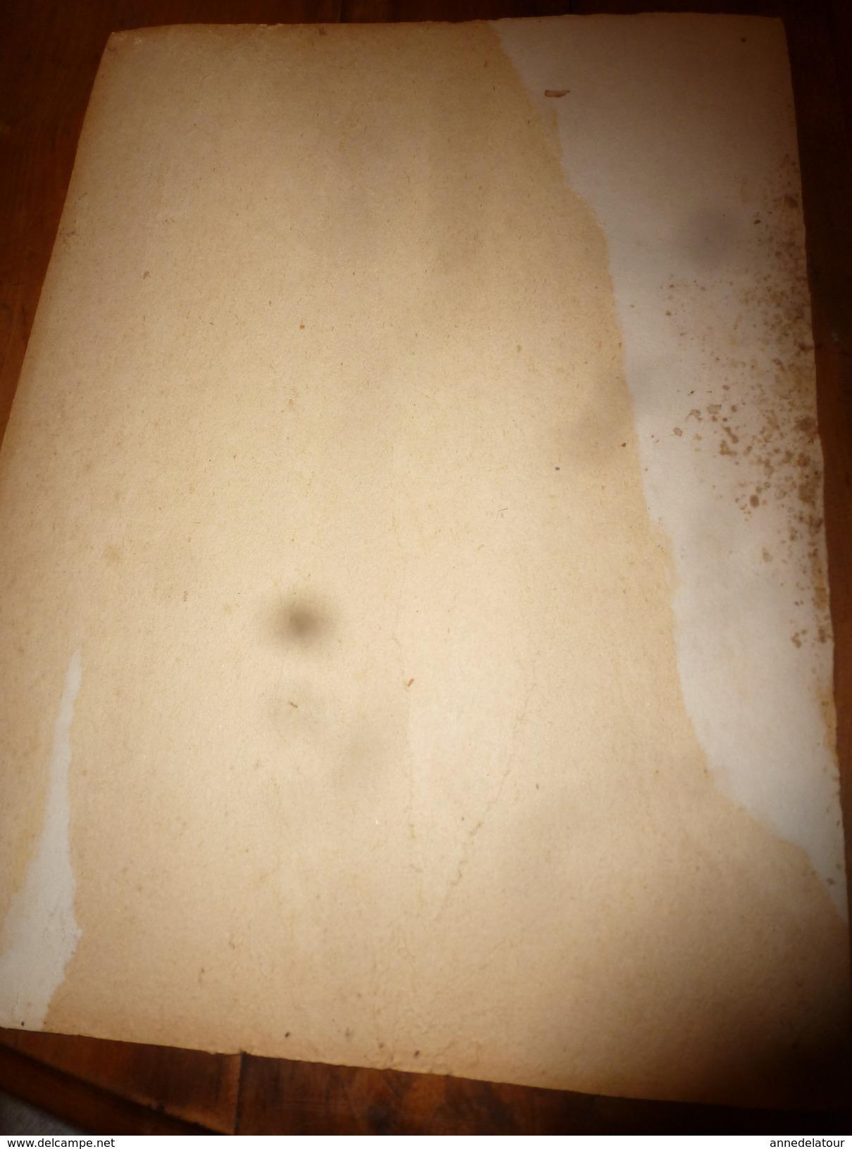 1895 Plaque Publicitaire Du FIGARO ILLUSTRE 52cm X 32cm ---> Jolie Jeune Fille En Barque Sur La Seine Par Adrien Moreau - Plaques En Carton