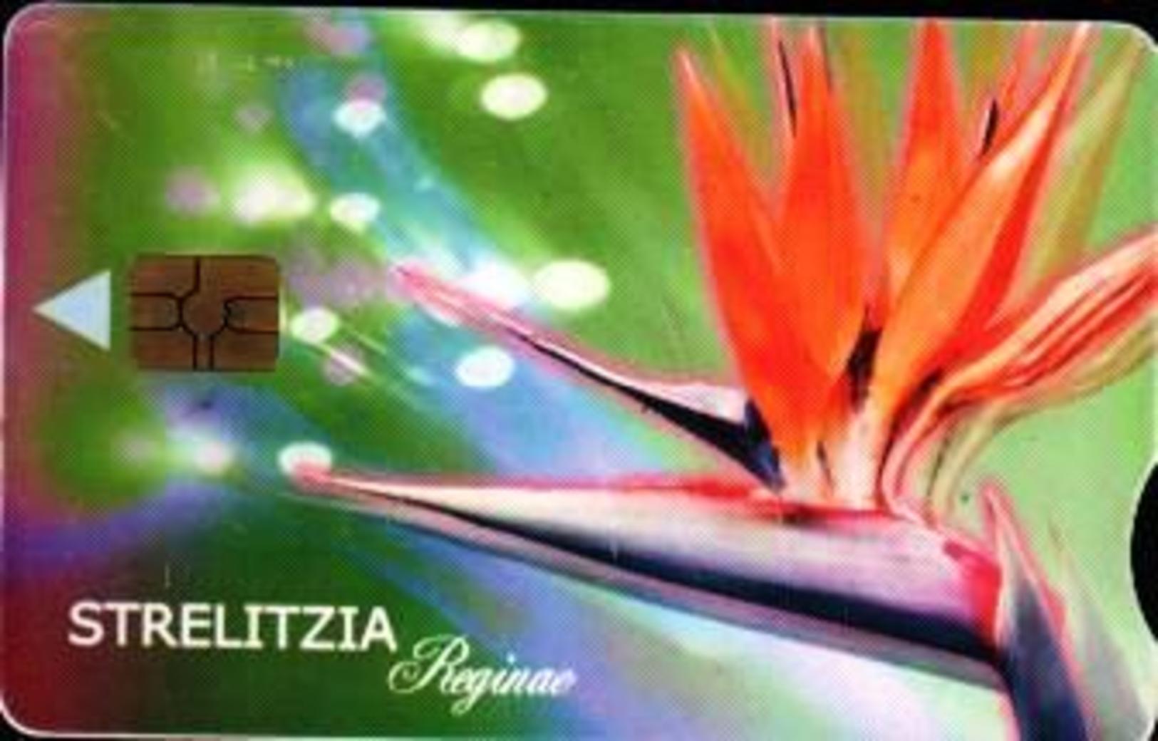"""SOUTH AFRICA Used Phonecard /gebruikte Telefoonkaart """"Strelizia Flower"""" - South Africa"""