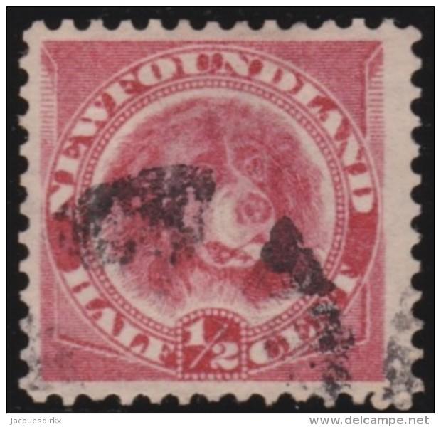 Newfoundlans    .    SG   .    49      .     O      .     Gebruikt   .    /      .        Cancelled - 1865-1902