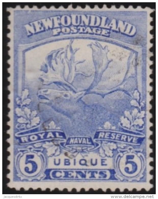 Newfoundlans    .    SG   .     134          .       O      .     Gebruikt   .    /      .        Cancelled - Newfoundland