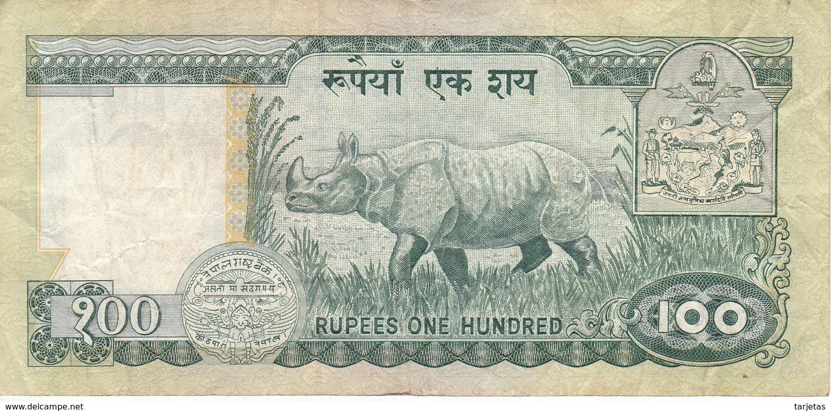 BILLETE DE NEPAL DE 100 RUPIAS DEL AÑO 1981 RINOCERONTE-RHINO (BANKNOTE) - Nepal