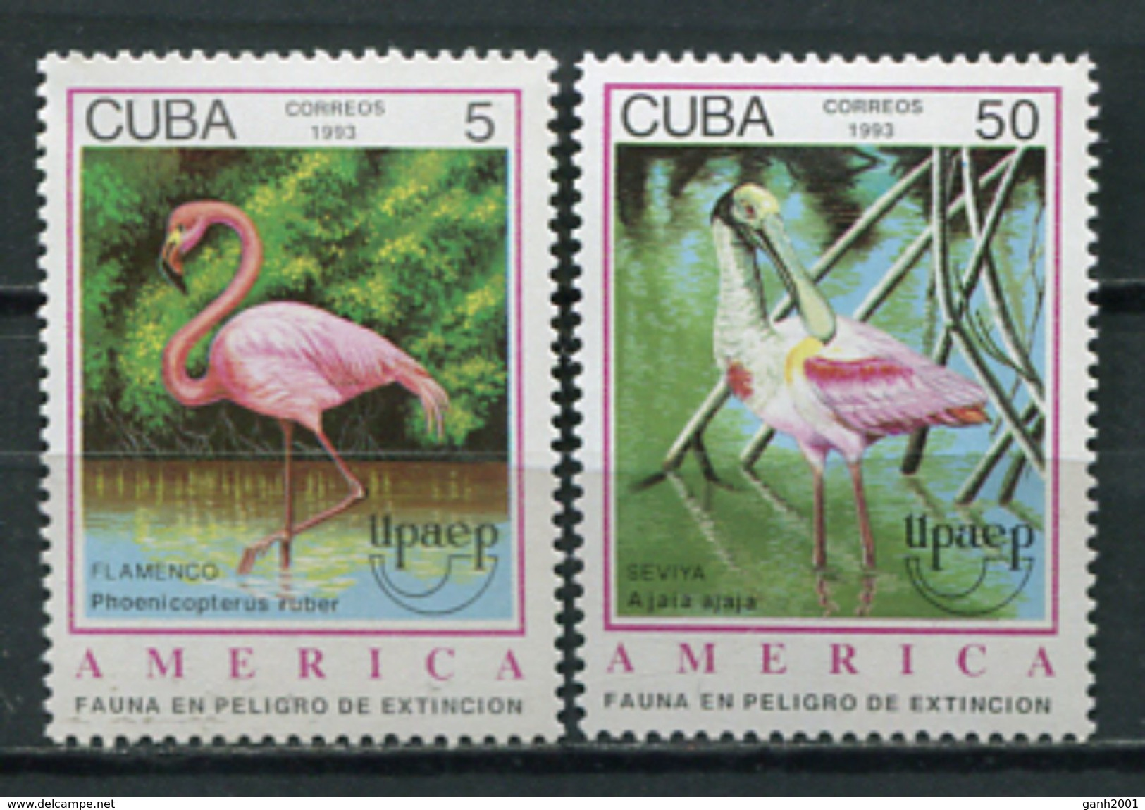 Cuba 1993 / Birds UPAEP MNH Aves Vögel Oiseaux / Cu5819  31 - Pájaros