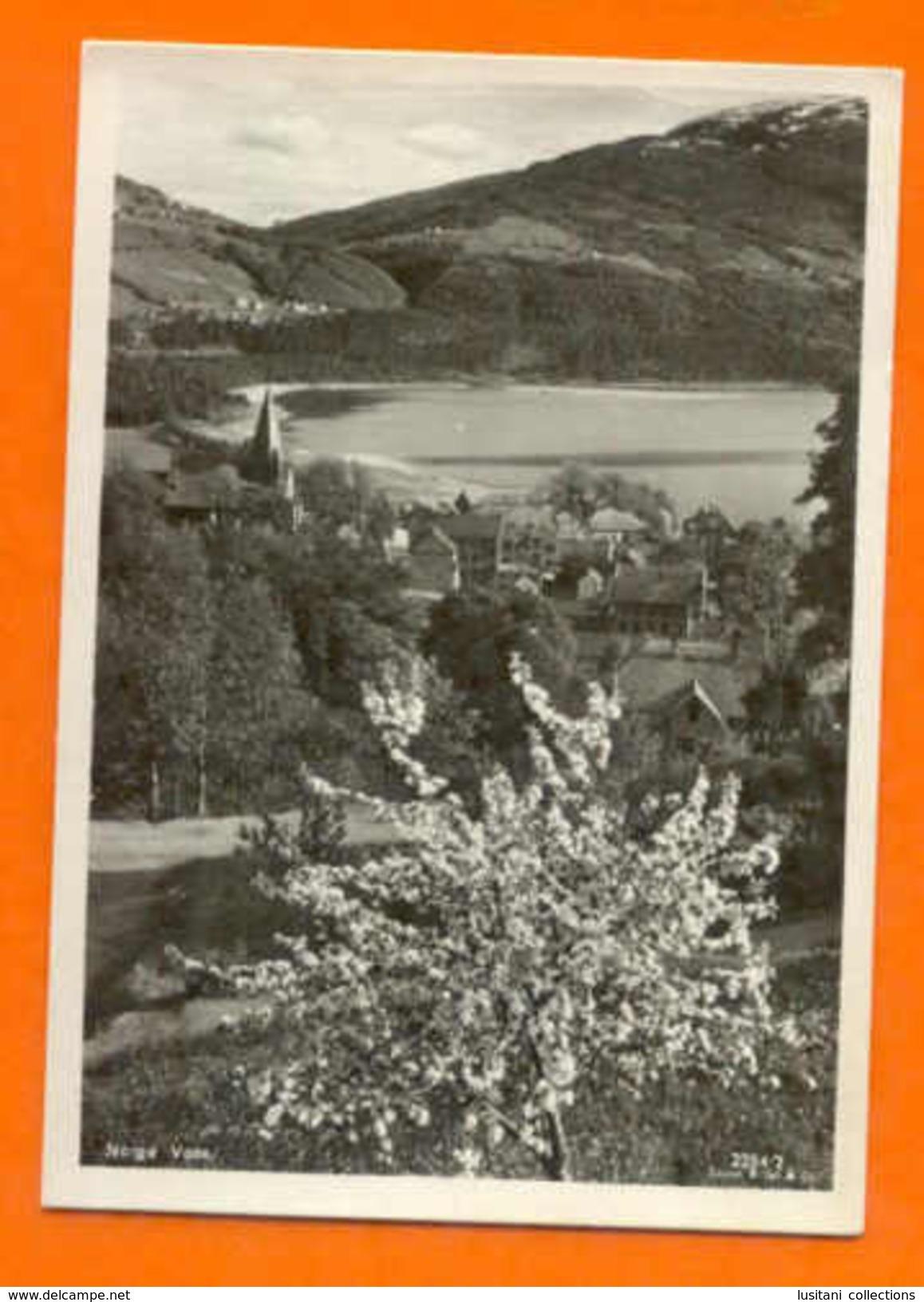 POSTCARD NORWAY NORGE VOSS PARTIAL VIEW NORUEGA - Postcards