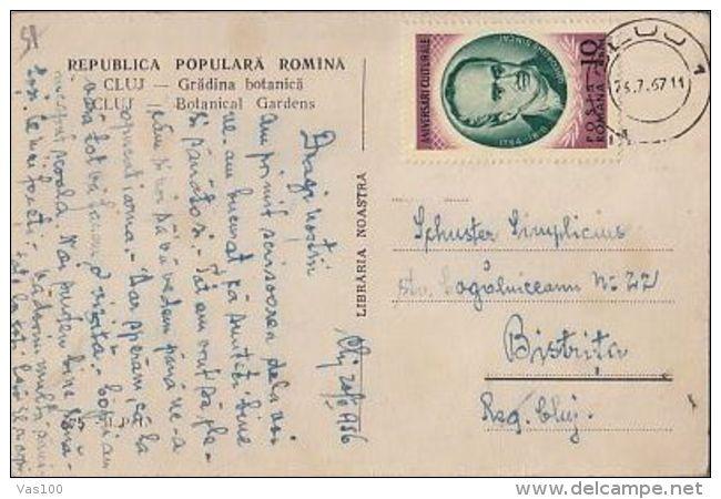 CACTUSSES, CLUJ NAPOCA BOTANICAL GARDEN, CM, MAXICARD, CARTES MAXIMUM, 1967, ROMANIA - Sukkulenten