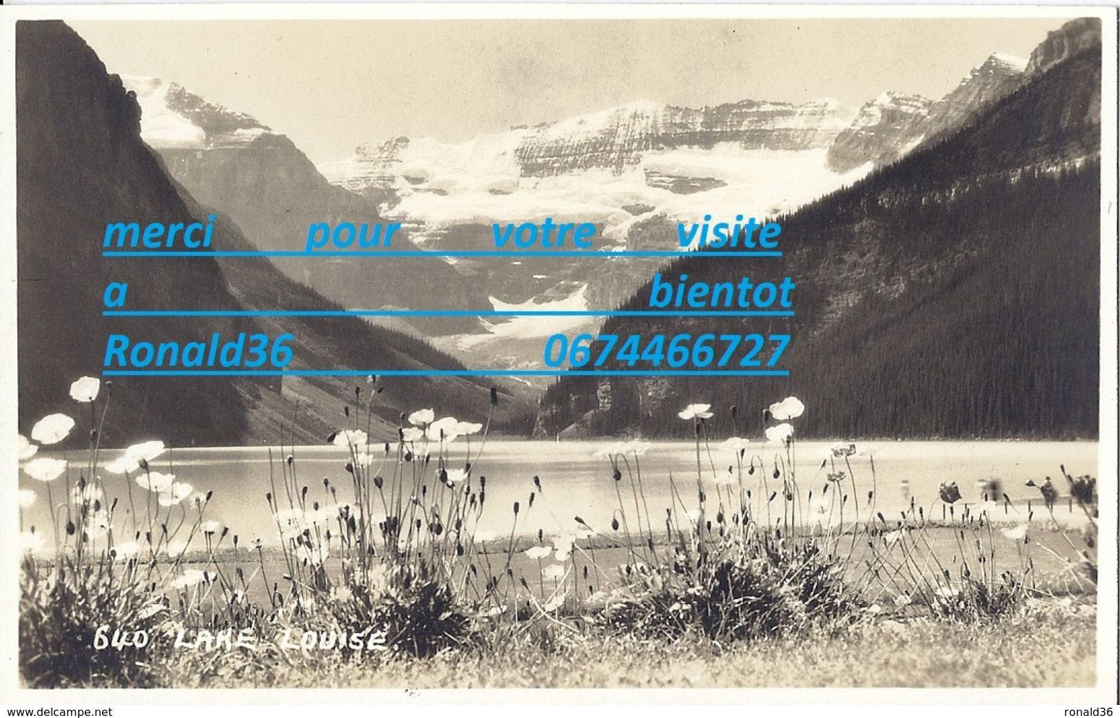 Cp Amérique Du Nord CANADA LAKE LOUISE  ( Pré Fleurs Printemps Montagne ) - Lac Louise