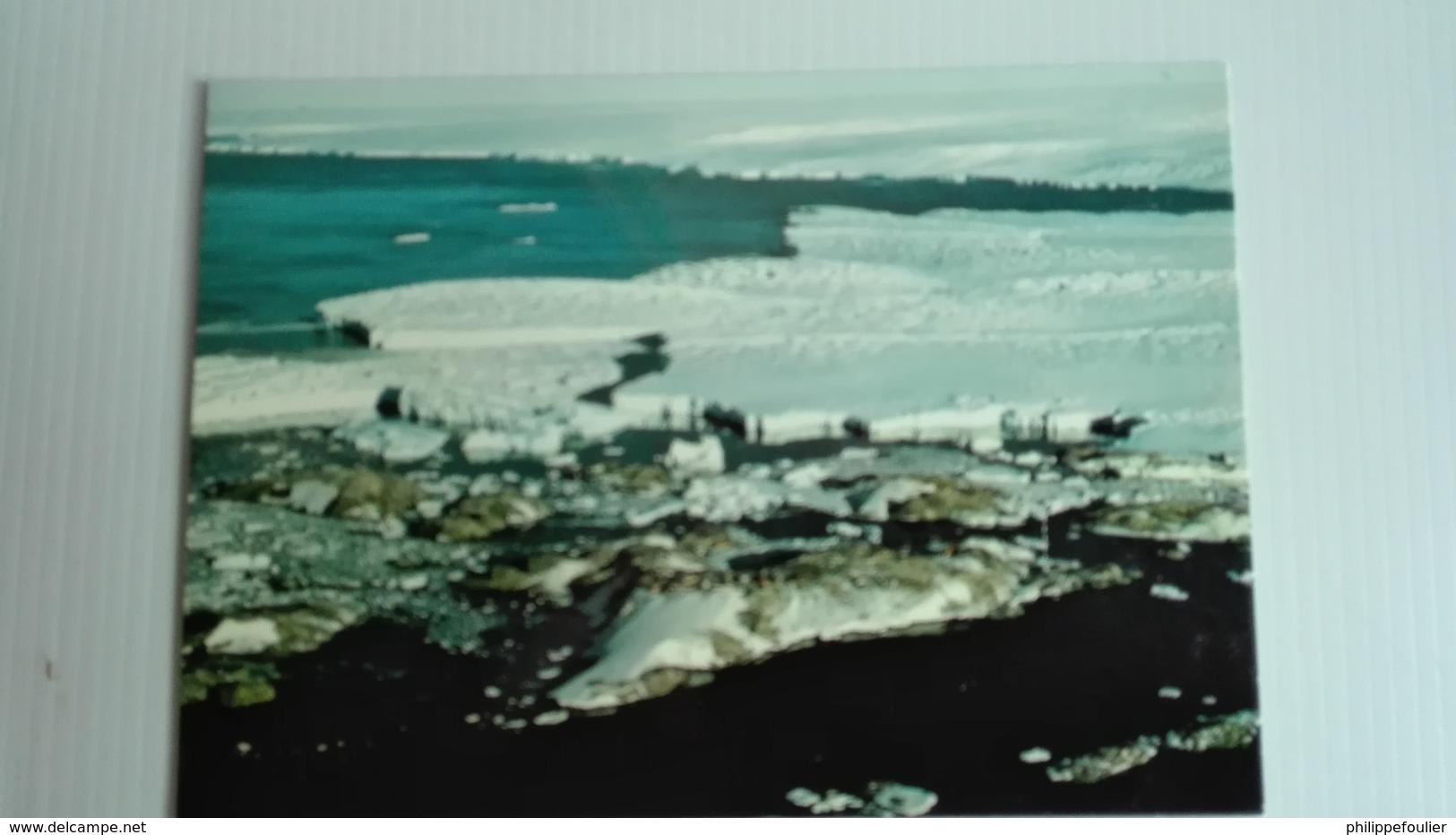 Carte Postale Couleur TAAF Pointe Géologie Glacier Astrolabe - TAAF : Terres Australes Antarctiques Françaises