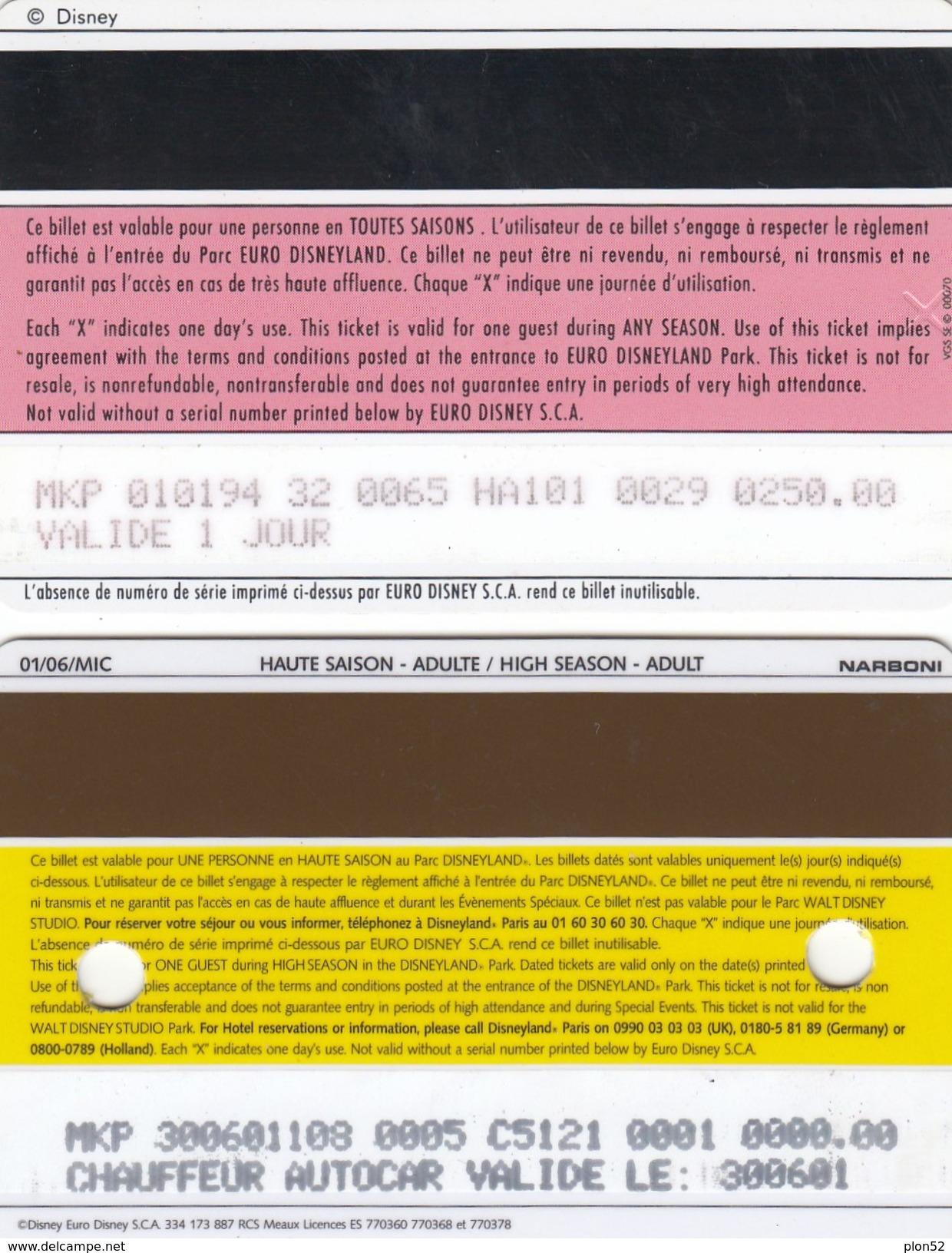 11160-N. 2 BIGLIETTI INGRESSO DISNEYLAND-USATI - Biglietti D'ingresso