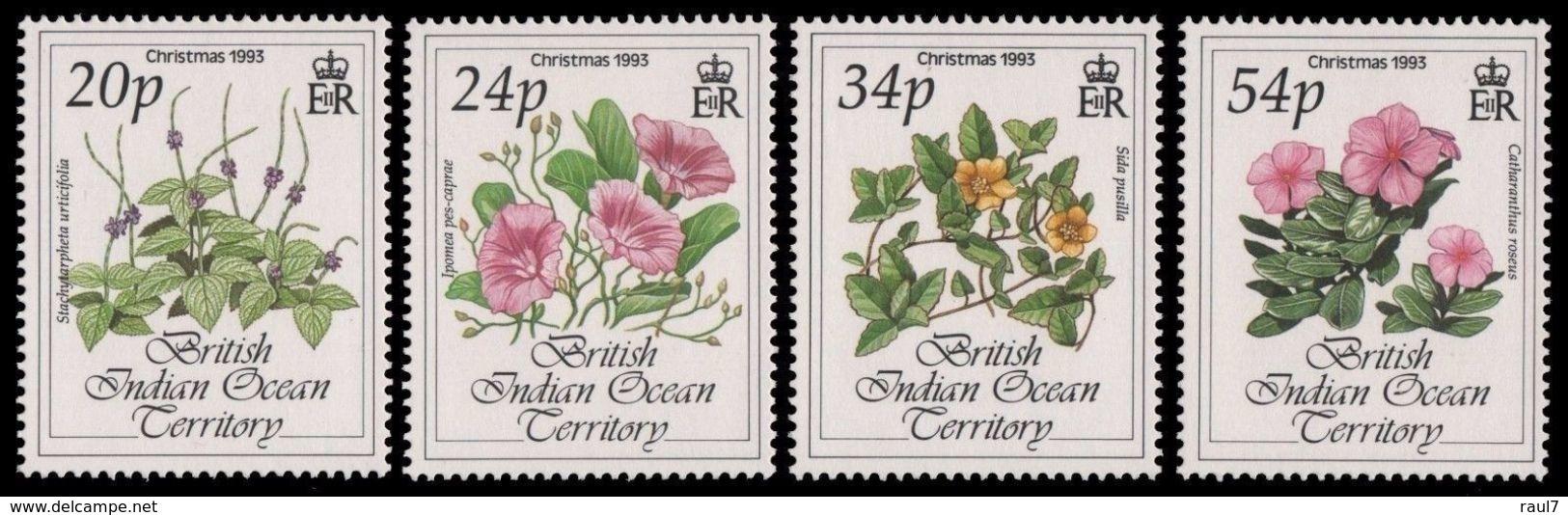 B.I.O.T. 1993 - Fleurs, Noël 1993 - 4 Val Neufs // Mnh - Territoire Britannique De L'Océan Indien
