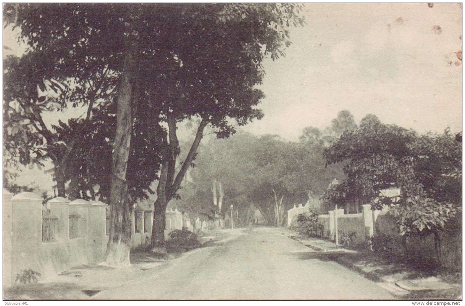 ALTE  AK  DILI  / Osttimor   - Un Rua De Dili -  Ca. 1920 - Timor Oriental