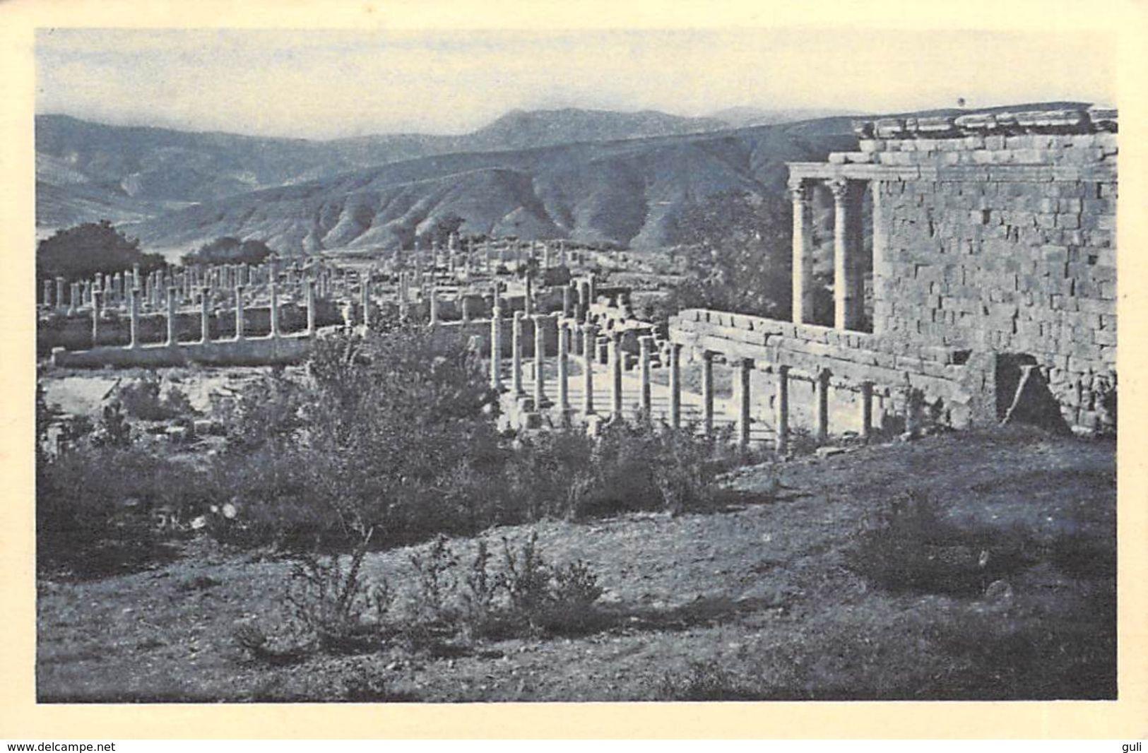 Afrique ALGERIE  (wilaya De Sétif)  DJEMILA  Vue Générale -(cité Antique)  Cpa - Editions SPTGA 2/49 *PRIX FIXE - Sétif