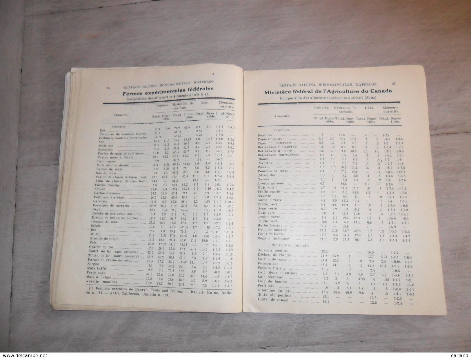 Elevage Callina ( 111 Pages )  1919 - 1923  Mont - St - Jean  Waterloo  Prop.Huylebroeck - Coq  Poule Poules - Libros, Revistas, Cómics