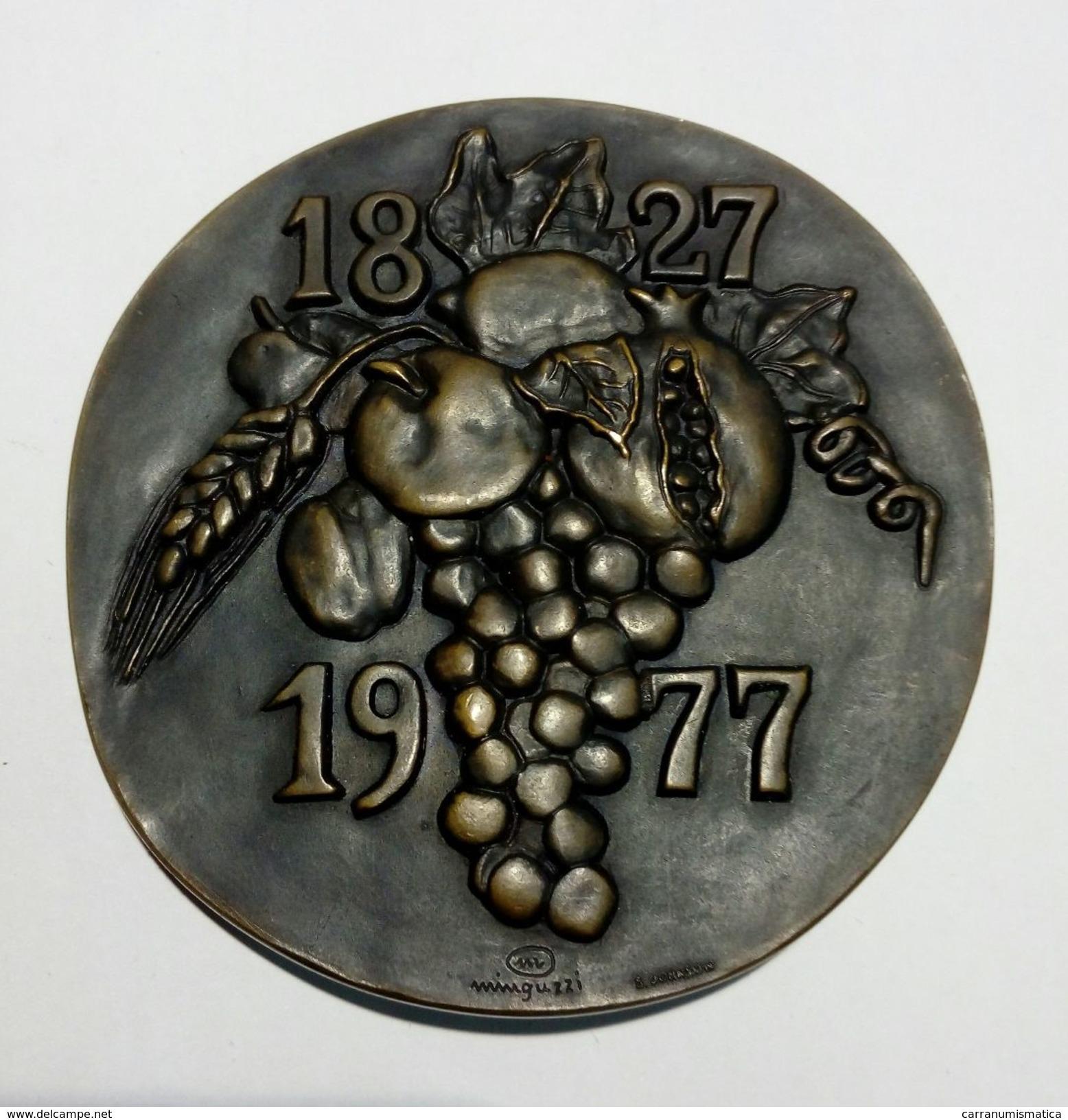 MEDAGLIA - 150° Anniversario Della CASSA Di RISPARMIO Di TORINO (1827 - 1977) Opus: Minguzzi - Bronzo - 77 Mm - Professionali/Di Società
