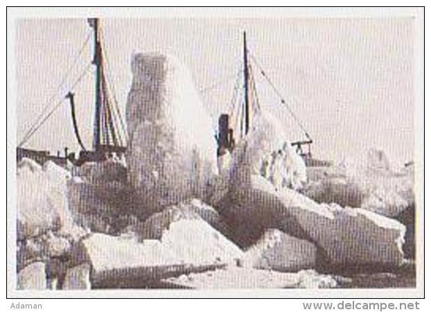 Terre Adélie ?        2        Is-Skruing - TAAF : Terres Australes Antarctiques Françaises