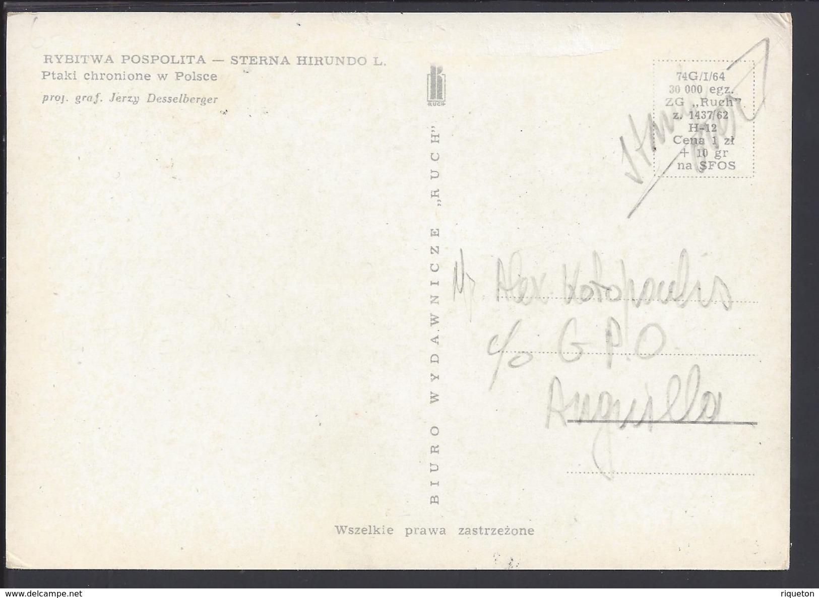 """ANGUILLA - Carte Maximum """"Sterne - Sterna Hirondo"""" Cachet Anguilla Valley 14 Décembre 1968 - B/TB - - Anguilla (1968-...)"""