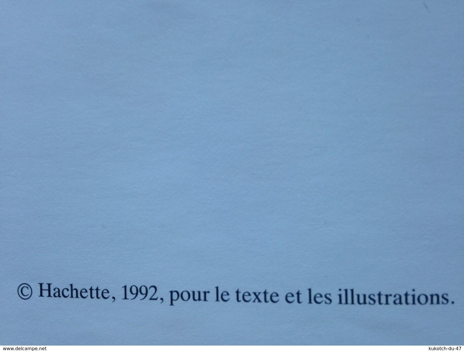 Album Jeunesse - Caroline Au Carnaval (1992) - Livres, BD, Revues