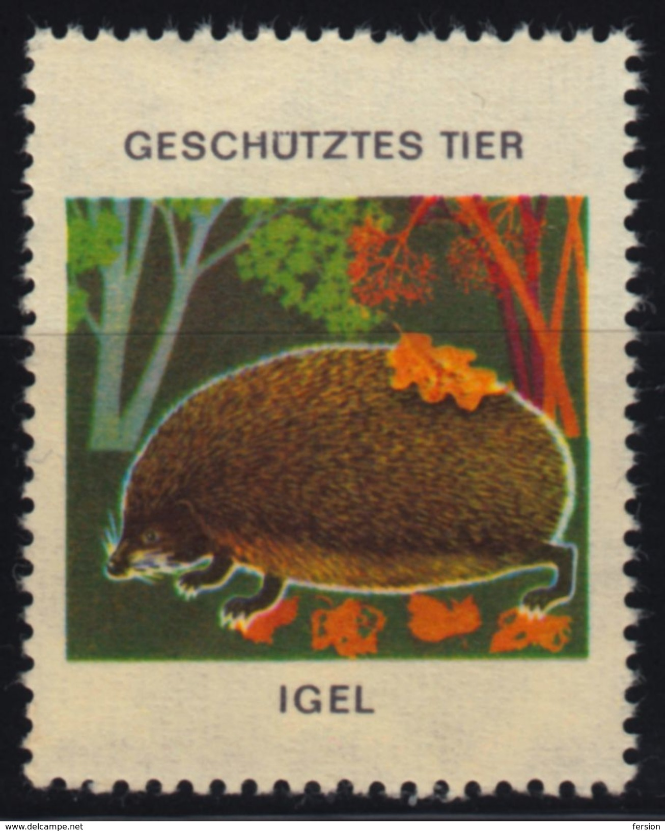 Hedgehog / Protected Animals / Label Cinderella Vignette - GERMANY - MNH - Stamps