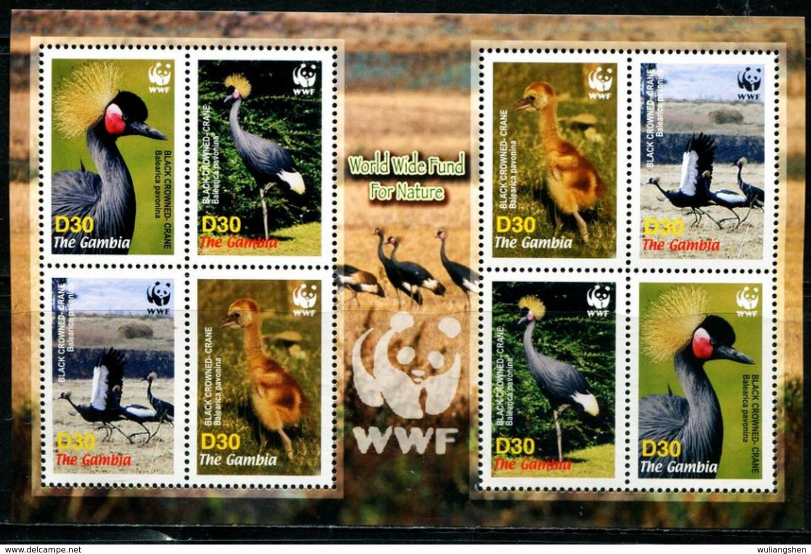 CR0065 Gambia 2006 Bird Of Prey Crowned Sheet WWF MNH - W.W.F.