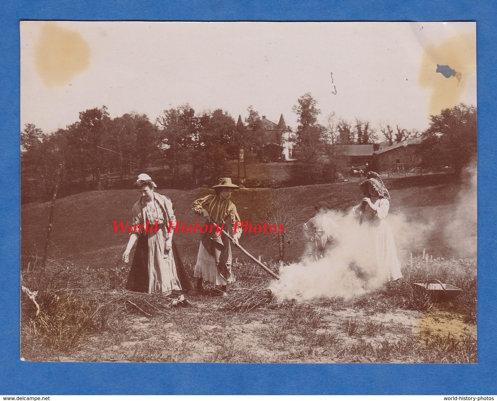 Photo Ancienne - à Situer , Environs D' EAUZE ( Gers ) , Bretagne D' Armagnac - Scène Agricole - Agriculture - RARE - Beroepen