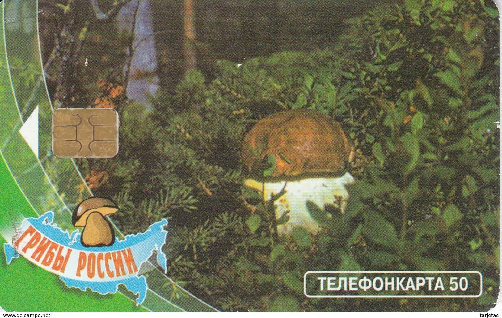 TARJETA DE RUSIA DE UNA SETA (HONGO-MUSHROOM) - Alimentación