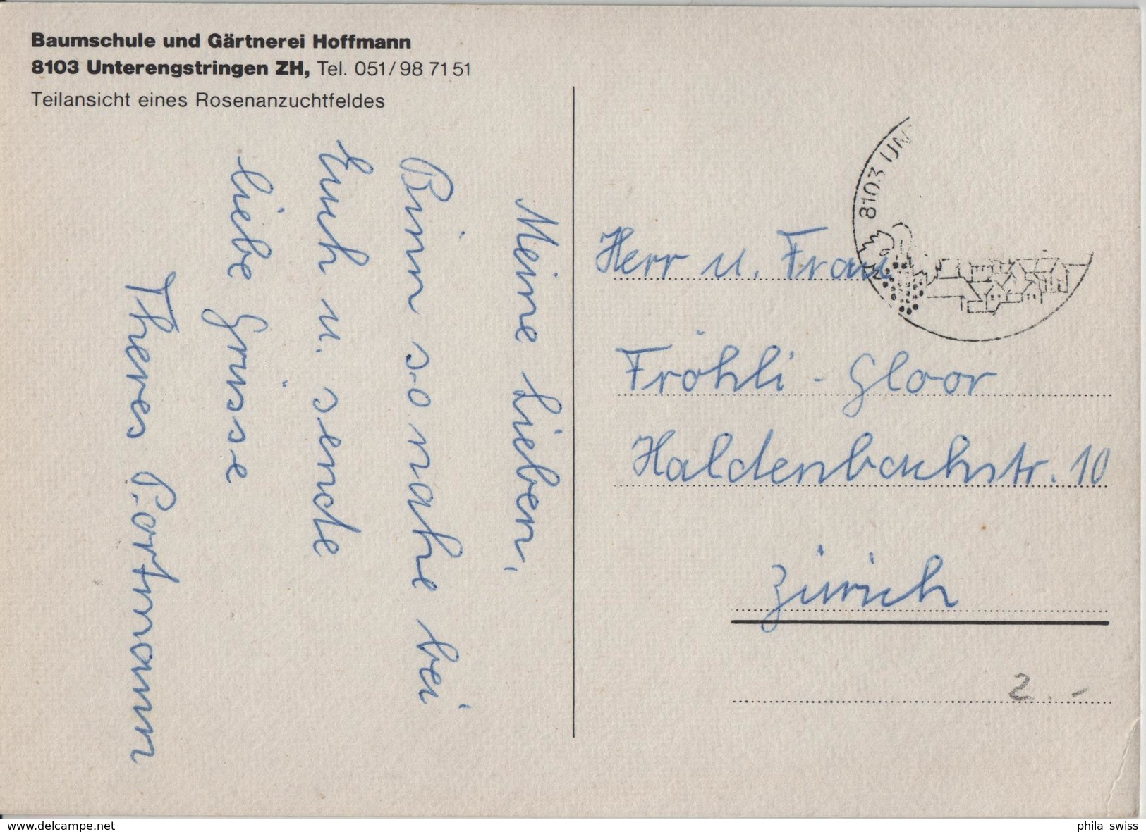 Baumschule Und Gärtnerei Hoffmann, 8103 Unterengstringen - Teilansicht Eines Rosenzuchtfeldes - ZH Zürich