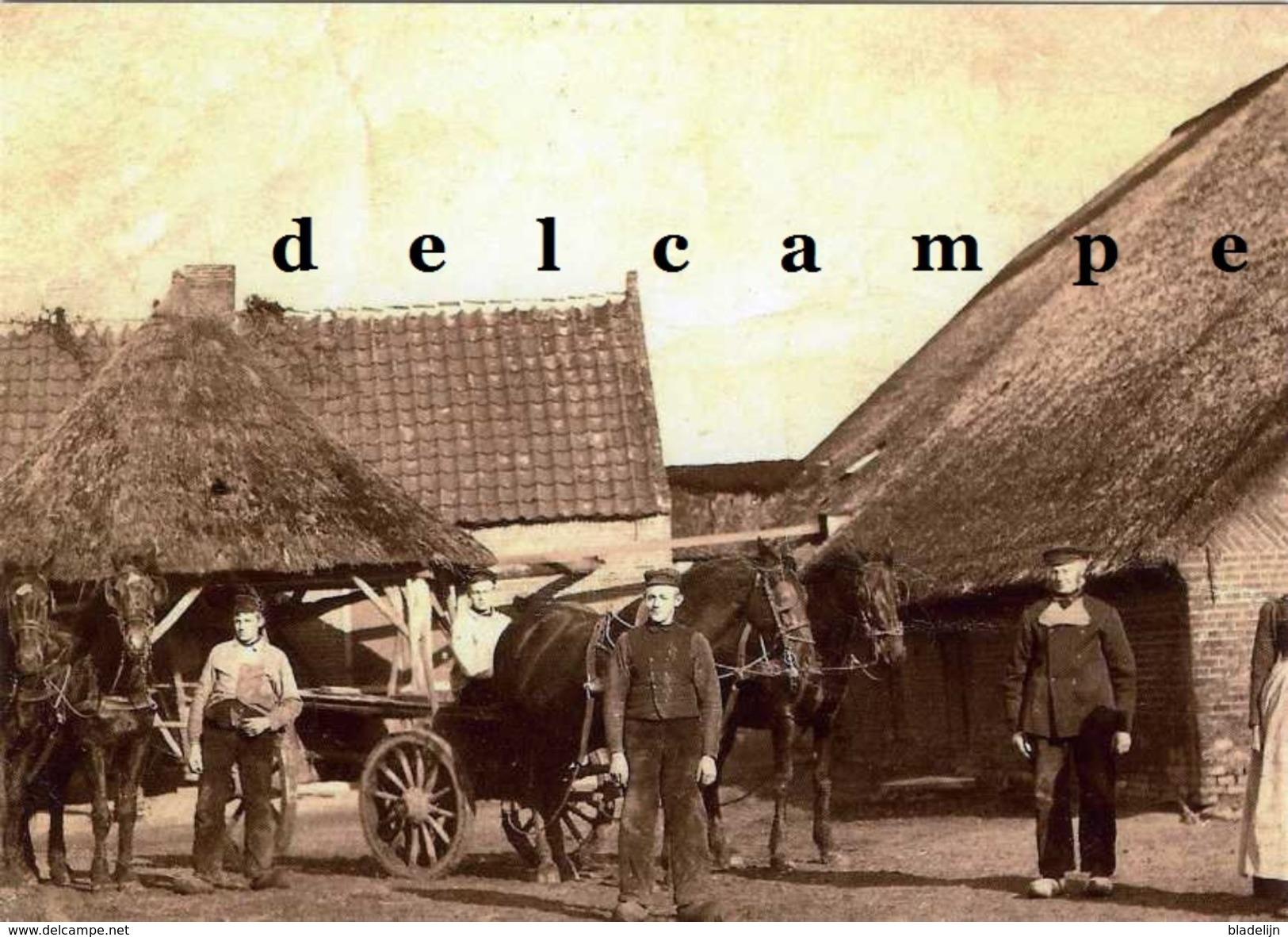 MAARSBERGEN (Utrecht) - Molen/moulin - Oude Opname Van De Verdwenen Rosmolen Van Boerderij Groot Haksvoort Ca. 1910 - Maarsbergen