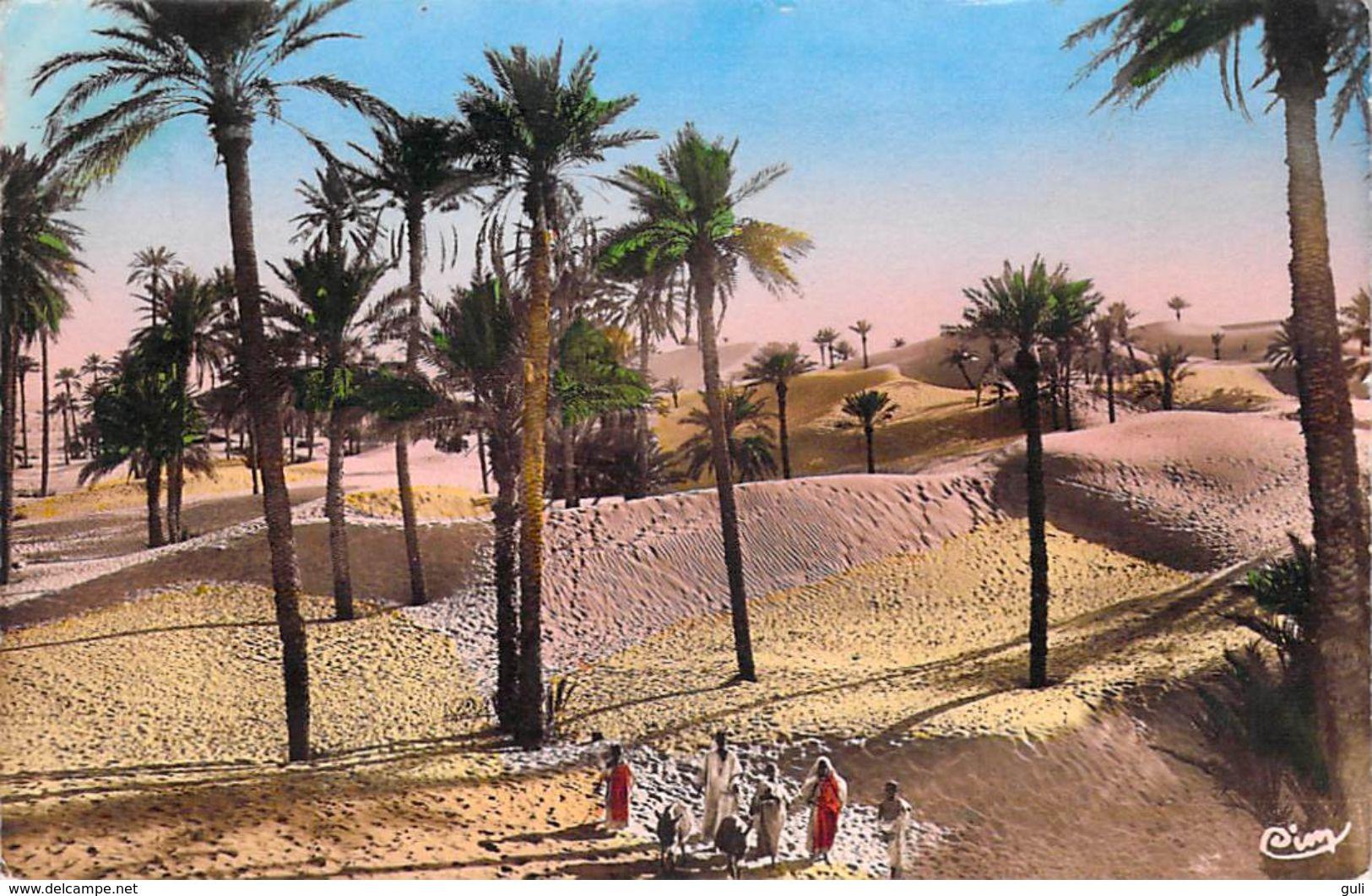 Afrique - Algérie Dans La Palmeraie (Collection  R.PROUHO 1193)  - *PRIX FIXE - - Scènes & Types