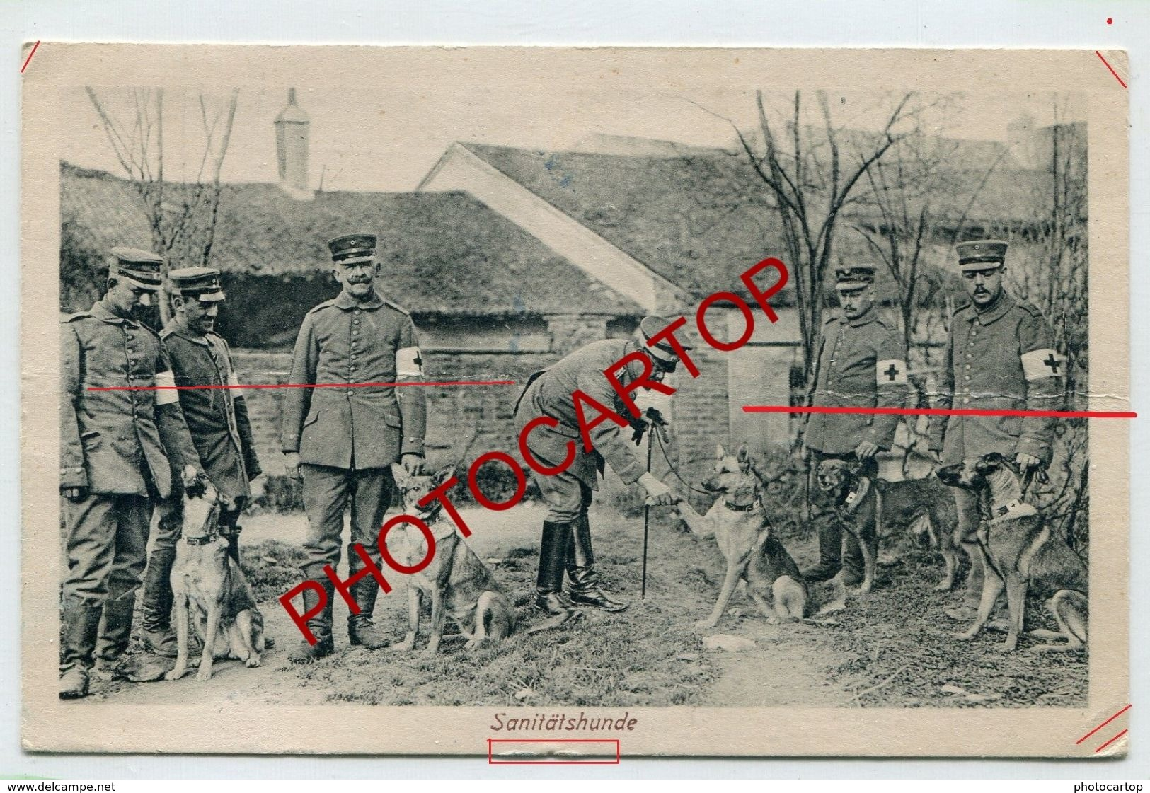 CHIENS Secouristes-Croix Rouge-NON SITUEE-CARTE Imprimee Allemande-Guerre 14-18-1 WK-Militaria-Feldpost - Oorlog 1914-18