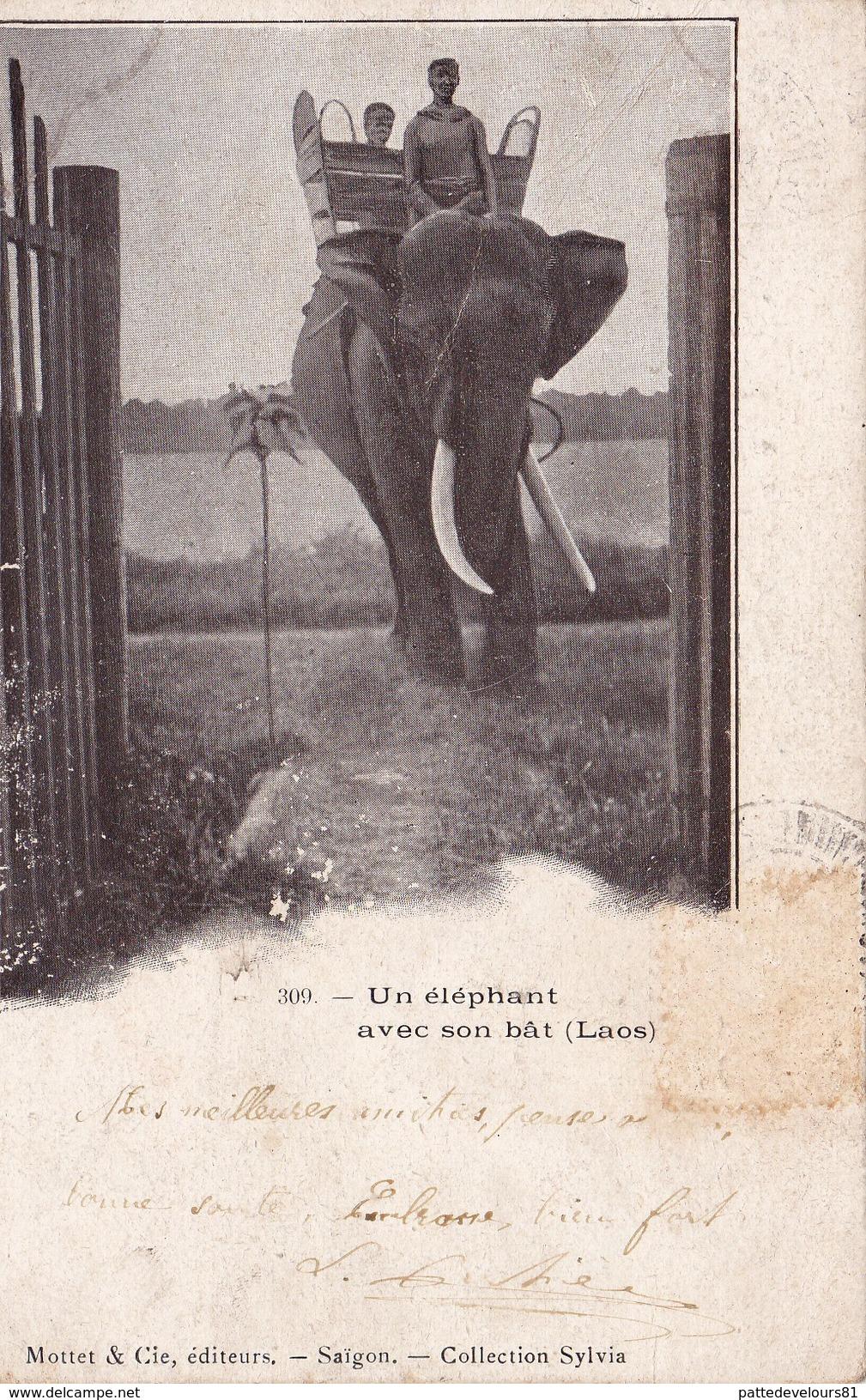 LAOS Un Eléphant Avec Son Bât - Laos