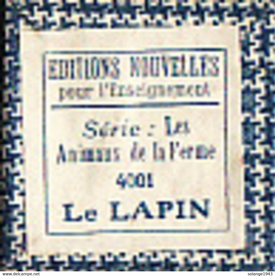 1 Film Fixe LA FERME LE LAPIN (ETAT TTB ) - Bobines De Films: 35mm - 16mm - 9,5+8+S8mm