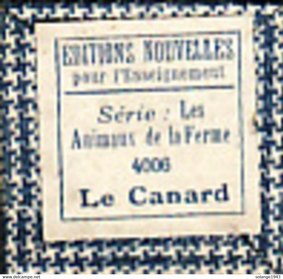 1 Film Fixe LA FERME LE CANARD (ETAT TTB ) - Bobines De Films: 35mm - 16mm - 9,5+8+S8mm