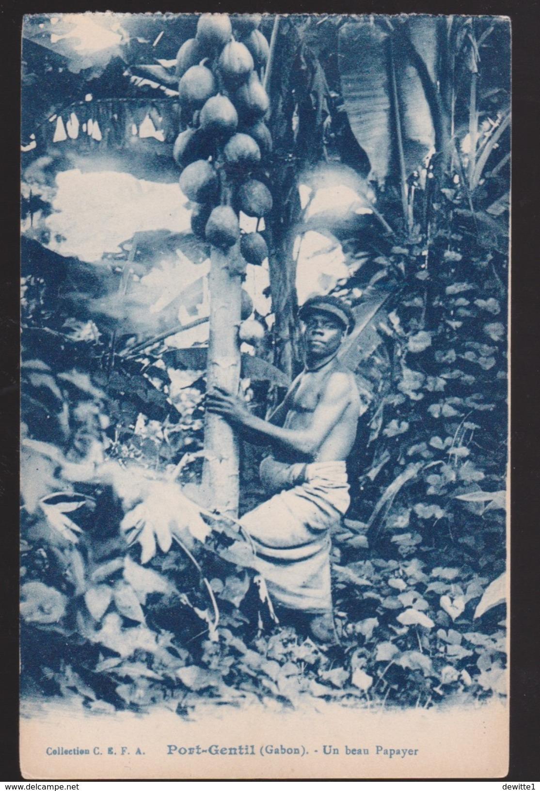 CPA   Port-Gentil (Gabon) Un Beau Papayer - Gabon